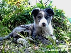 Eiko à 4 mois
