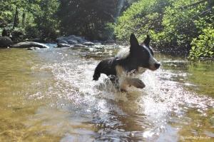 j'aime l'eau