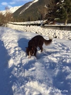 mes premières neiges
