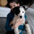 Ossau à 3 mois avec Mathilde